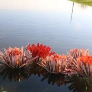Installation fleurs à Wambrechies